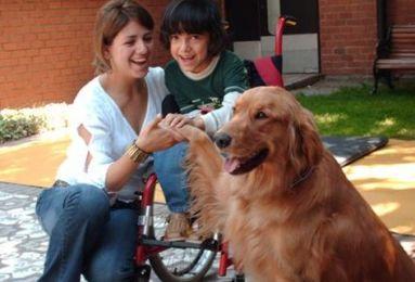 perro con humanos